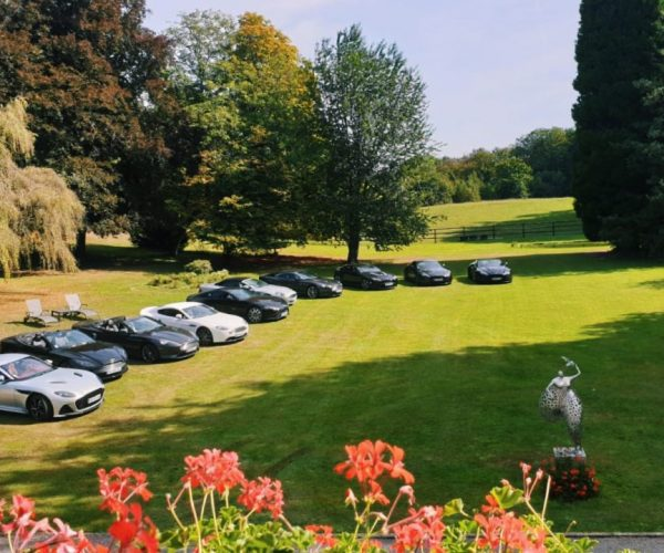 parking VIP du 1er concours Européen d'élégance automobile et éco-mobilité Strasbourg Passions et Élégance
