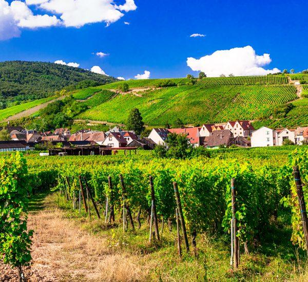 itinérances balades thématiques tourisme Alsace